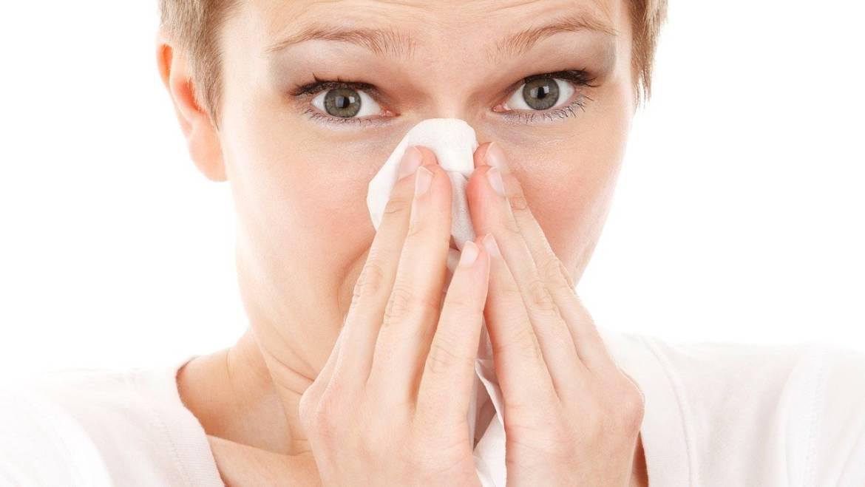 Grzejnik dla alergików – jaki wybrać?
