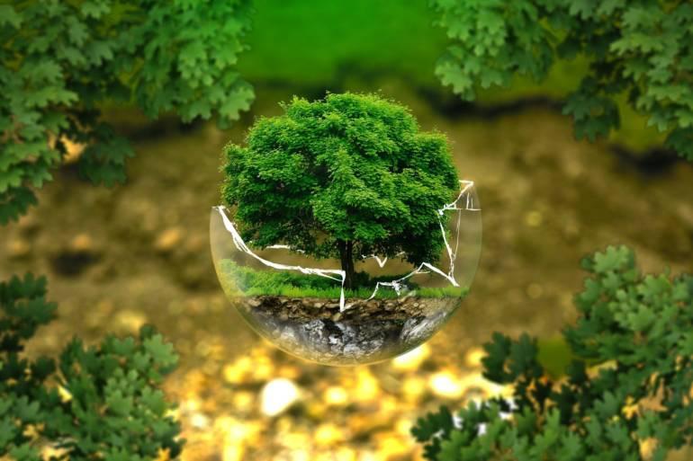 Ekologiczny grzejnik – wydajność i funkcje